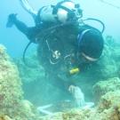Scientific diver taking a quadrat.