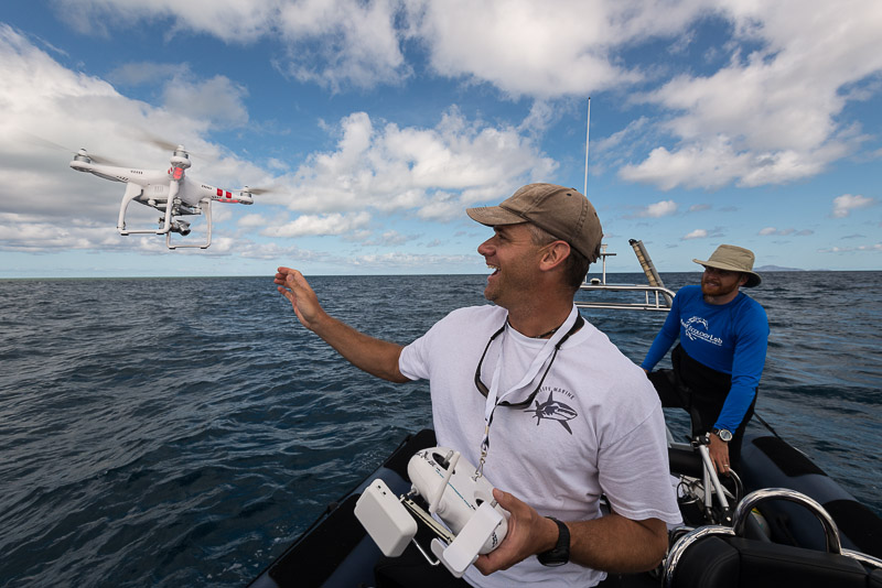 Will Robbins uses a camera drone to find sharks on reeftops. © Jürgen Freund/LOF