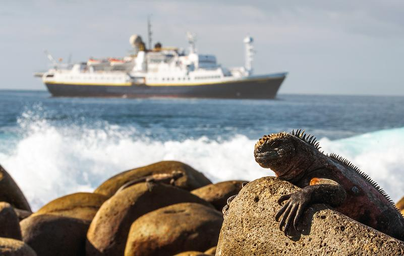 Managers of Marine World Heritage sites from around the world met in the Galápagos aboard the Lindblad Expeditions National Geographic Endeavour. (© Daniel Correia/UNESCO)