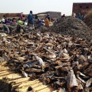 Tons of fish are dried and processed by hand every year in Joal.