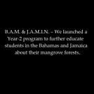 bam-jamin-group