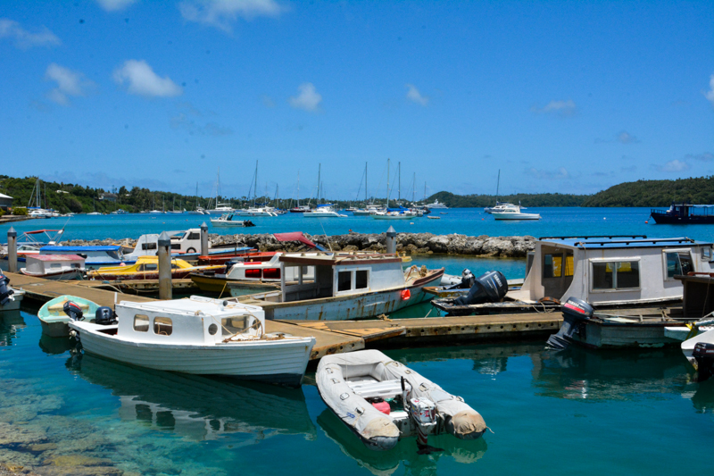 The fishing boats in Neiafu Harbor in Vava'u.