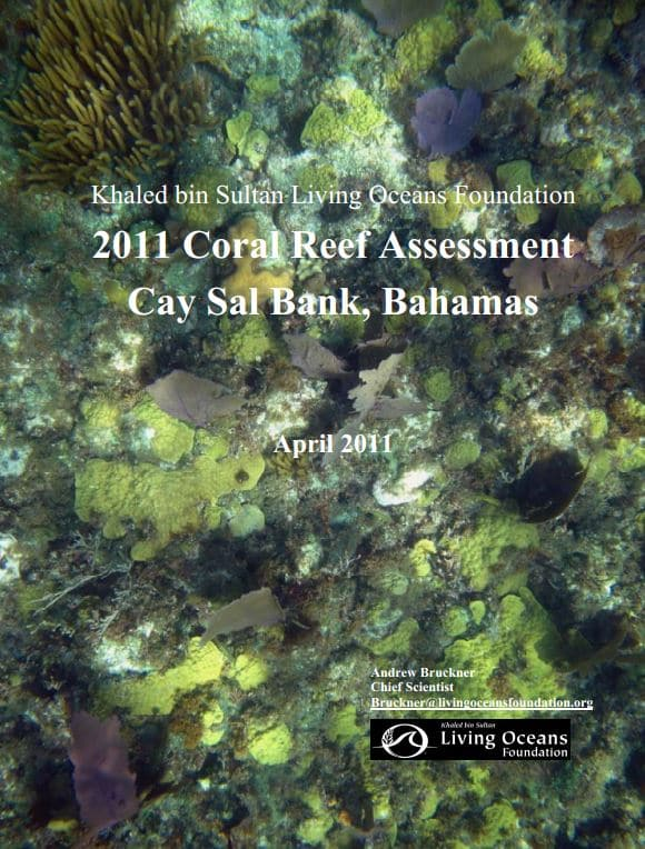 Khaled bin Sultan Living Oceans Foundation Coral Reef Assessment Cay Sal Bank Bahamas 2011