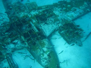 Walter Wyatt's plane twenty five years after sinking