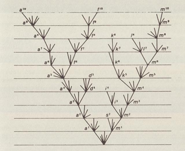 Theory of Evolution: Origin of Species illustration
