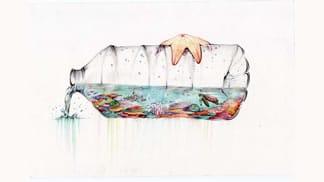 2014 SWOB Winner - Reef in a Bottle
