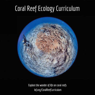 New Coral Reef Ecology Curriculum