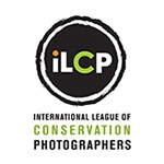 ILCP_logo-hi-2