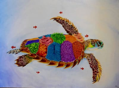 First Place: Liberty Turtle (Libertatum testudo graeca) by Rebecca Kneale, Age 15, New Zealand