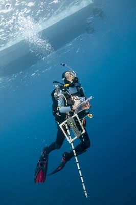 Global Reef Expedition Scientist Conducting Research for the Living Oceans Foundation