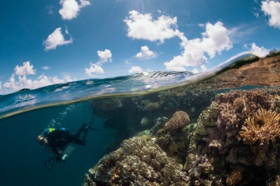 Scuba Diving at a Coral Reef