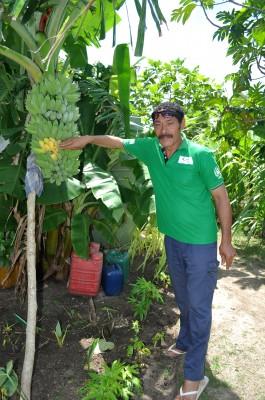 Hoifua 'Aholahi pointing to the ripe bananas.