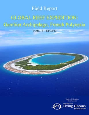 Gambier Field Report, French Polynesia Coral Reef Research