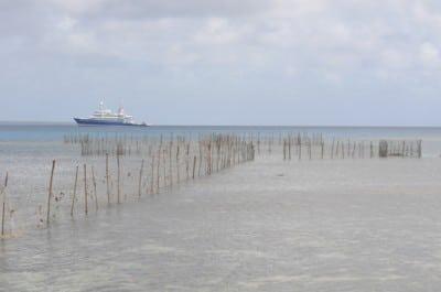 A Traditional Tongan Fishing Trap.