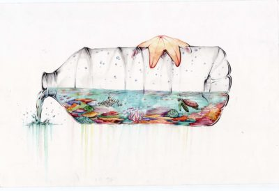 """Science without Borders® Challenge winner:""""Reef in a Bottle"""" by Riley Samels"""