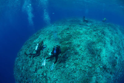 KSLOF science divers survey corals at outer edge of the Great Barrier Reef.