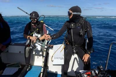 Scientific divers look like underwater ninjas.