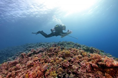 Scientific research diver with stereocam over Great Barrier Reef.