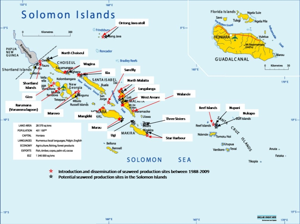 Sustainable Seaweed Farming in Solomon Islands (KSLOF)Living