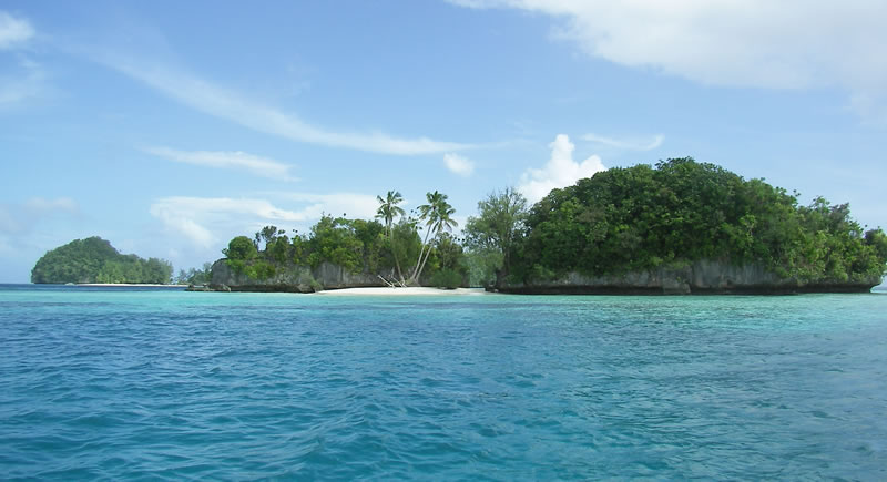 The Palau Expedition Movie HD free download 720p