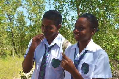 Students from William Knibb High School tasting a mangrove leaf.