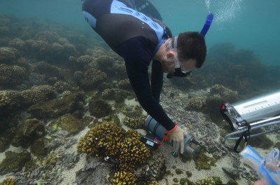 Research diver measures the pH of the seawater at Galapagos