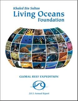 Khaled bin Sultan Living Oceans Foundation Annual Report 2013