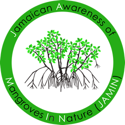 Jamaican Mangroves In Nature Project