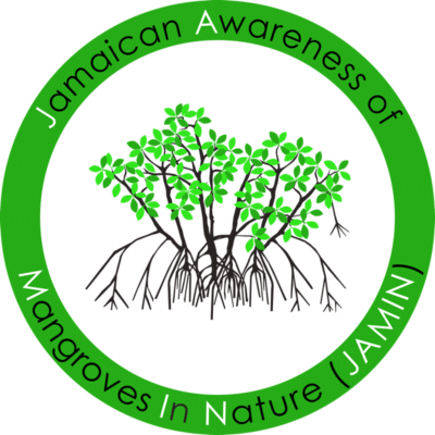 Jamaica Awareness of Mangroves in Nature (J.A.M.I.N.)