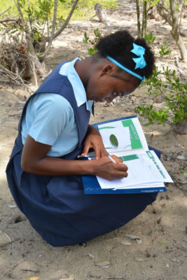 Jamaican-high-school-student-fills-in-answer-sheet-on-mangrove-field-trip
