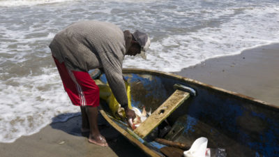 Fisherman returns to the shore at La Rosita with his catch.