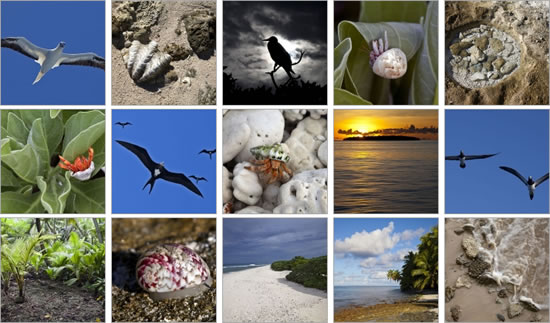 Islands of the Chagos Archipelago Photo Album