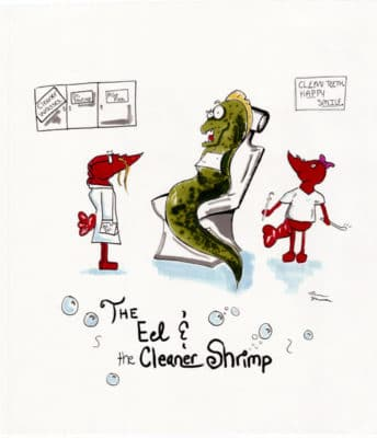Third Place: Morgan Hermann, Age 17, New York, USA; The Eel and the Cleaner Shrimp
