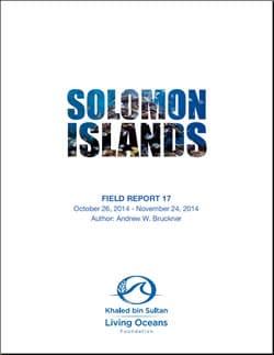 Solomon Islands Field Report