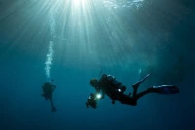 Science Divers on the Global Reef Expedition