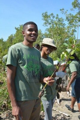 Jamaican high school students restoring  mangrove propagules to their natural environment