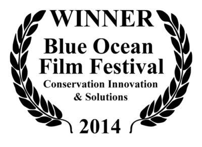 Winner blue ocean film festival