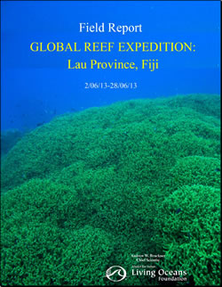 Fiji Field Report