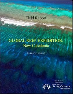 New Caledonia Field Report