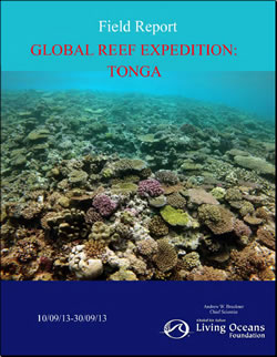 Tonga Field Report