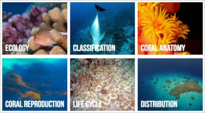 new marine science curriculum untis