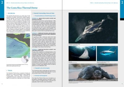 Protect the High Seas: Costa Rica Thermal Dome