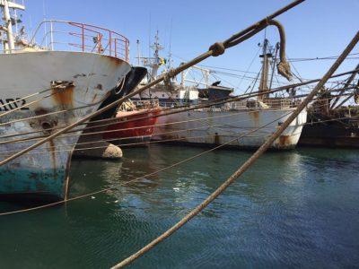 The Kunlun, renamed the Asian Warrior ̧ was finally captured in the port of Dakar
