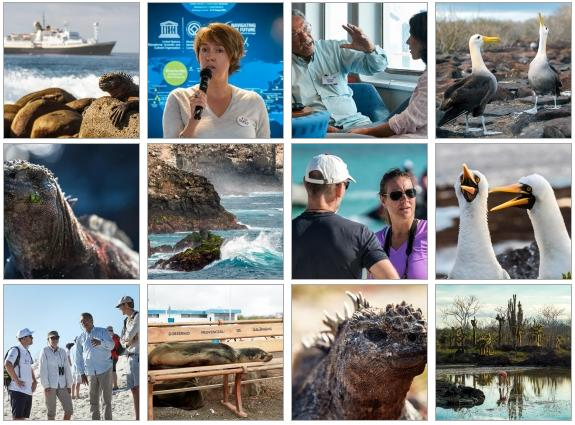 UNESCO World Heritage Marine Site Managers Conference Photo Album