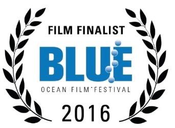 2016 Blue Ocean Film Festival Finalists