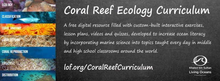 Coral Reef Education Portal By Living Oceans Foundation Wins W3