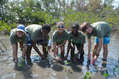 Students in the Year 1 B.A.M. and J.A.M.I.N. programs plant their mangrove seedlings.