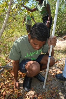 Students in the Year 2 B.A.M. and J.A.M.I.N. programs use scientific instruments to measure various abiotic factors in the mangroves.