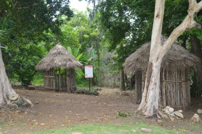 Reproduction of Arawak village at Seville Heritage Park