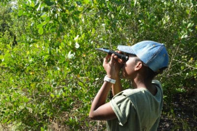 B.A.M. and J.A.M.I.N. – Image 2 - Students from William Knibb High School use scientific tools to measure various non-living factors in their mangrove quadrats.